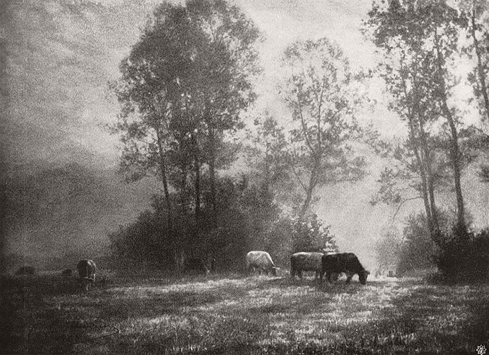 Photographie de Léonard Misonne