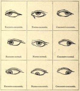 Les attitudes du globe oculaire, système Delsarte d'expression dramatique, 1886