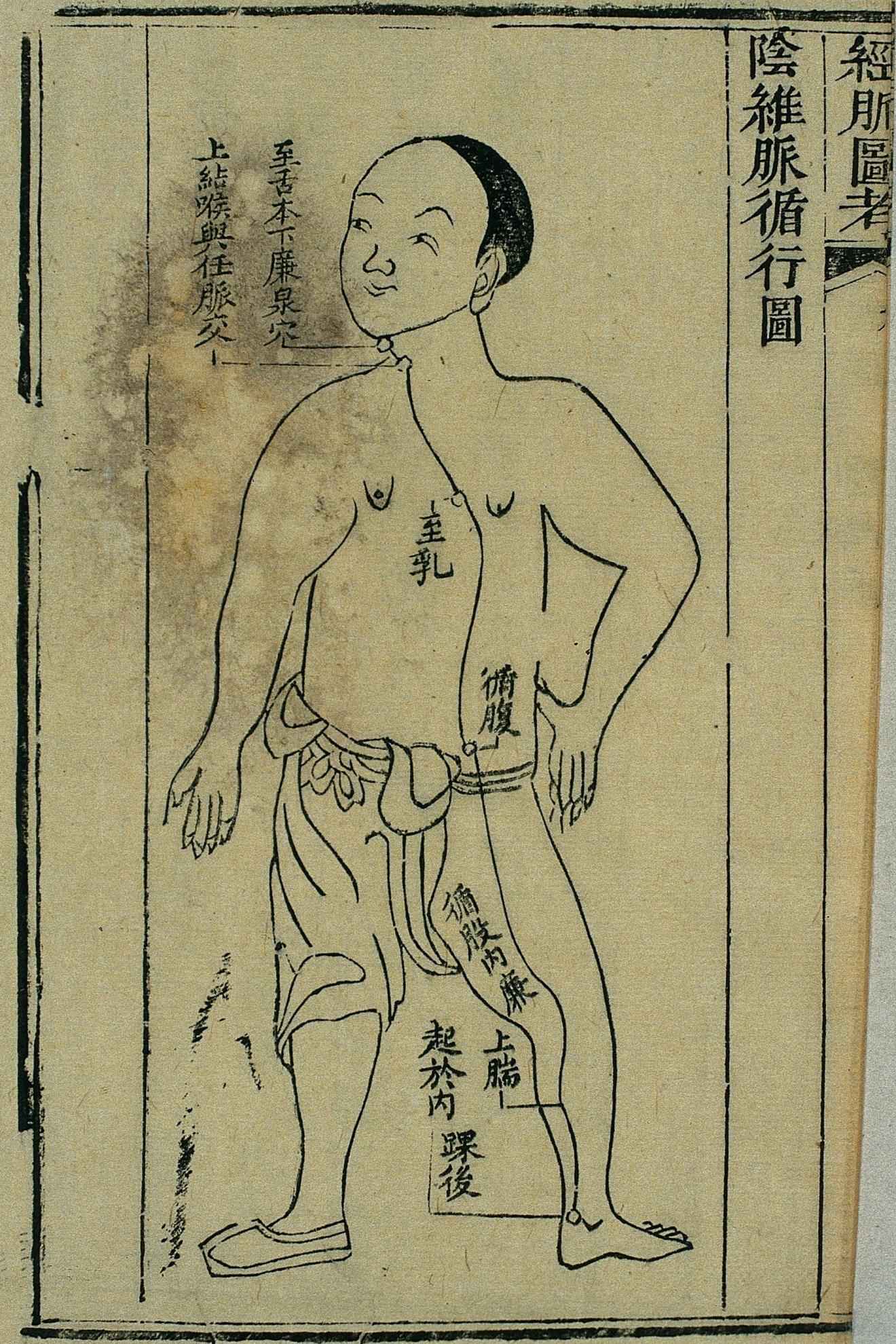 Gravure sur bois, illustrant le trajet du 阴维脉 yīn wéi mài