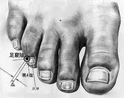足竅陰 zúqiàoyīn  est le quarante quatrième point du méridien de la vésicule biliaire.