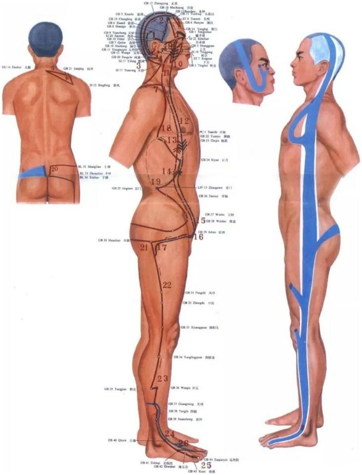 Illustration du méridien de la vésicule biliaire et le système collatéral du pied shaoyang