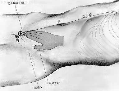 Os courbe, 曲骨 qū gǔ, est le deuxième point duvaisseau conception.