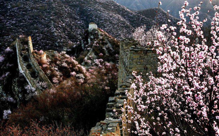 La muraille de Chine au printemps