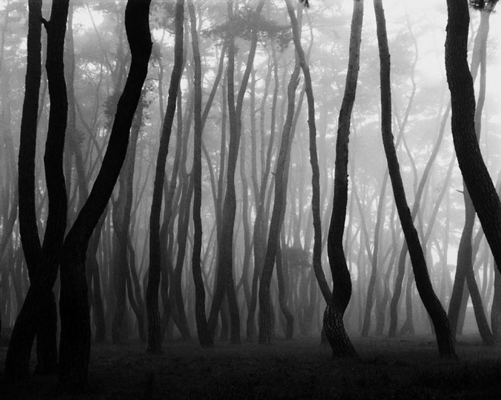 Les paysages sacrés de Bae Bien-U