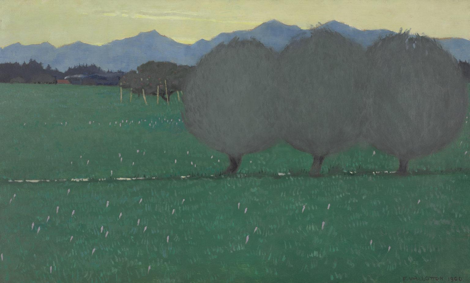 Les saules, 1900, huile sur carton, Félix Vallotton