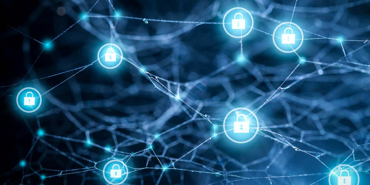 cyber ecosystem