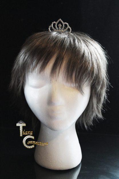 tiara comb on model