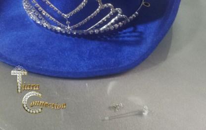 rodeo hat pin set