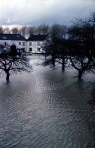 Boschpoort Hoog water boomgaard Bergmans 1984