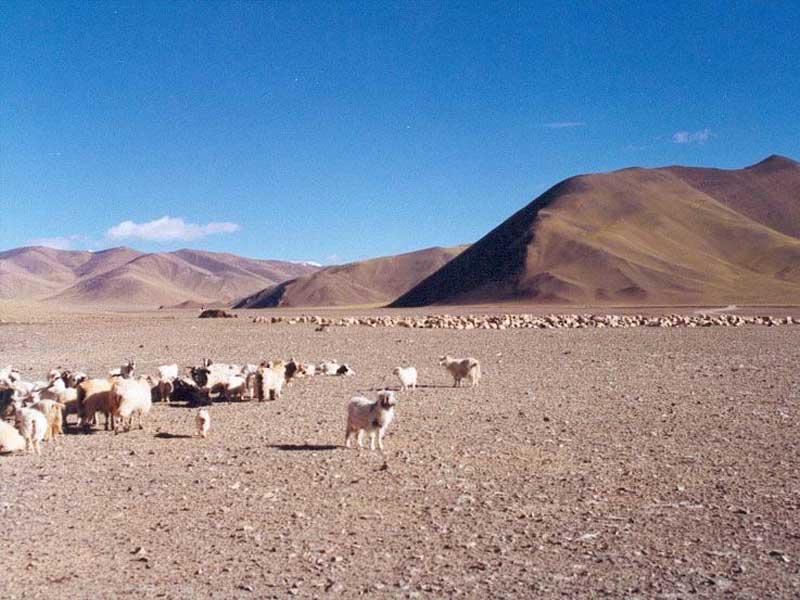 west tibet plateau