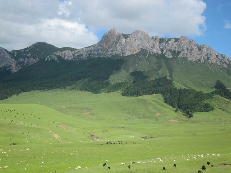Aba Tibetan & Qiang Autonomous Prefecture