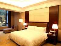 Gongga Shentang Hot Spring Hotel Room Type