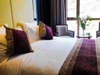 YUJING Saussurea Hotel Room Type