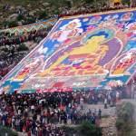 shoton-festival