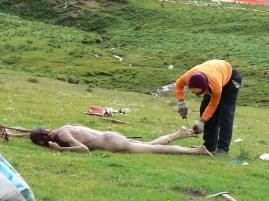 رویاپاس یا بدن شکن در حال قطعه قطعه کردن جسد تبت