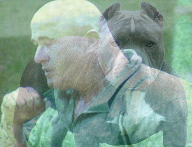 """Carlos """"Pitbull"""" Moreno destroza al Temporal"""