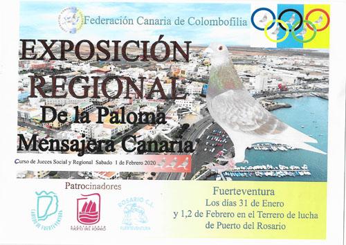 Exposición Regional de la Paloma Mensajera Canaria