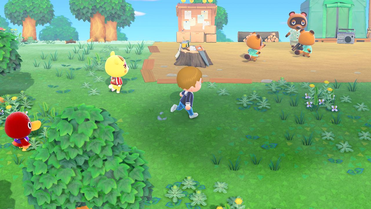 Animal Crossing: New Horizon