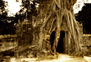 found-deep-in-the-jungles-of-cambodia