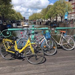 bridges-abd-bikes