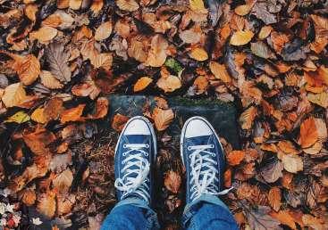 Fall getaways Ticketseller Μίνι - αποδράσεις το φθινόπωρο