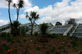 The Princess of Wales Conservatory - Kew Botanical Garden, London