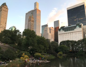 View of The Plaza from Central Park