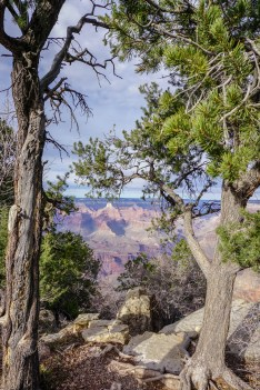 Grand Canyon - South Rim from the top