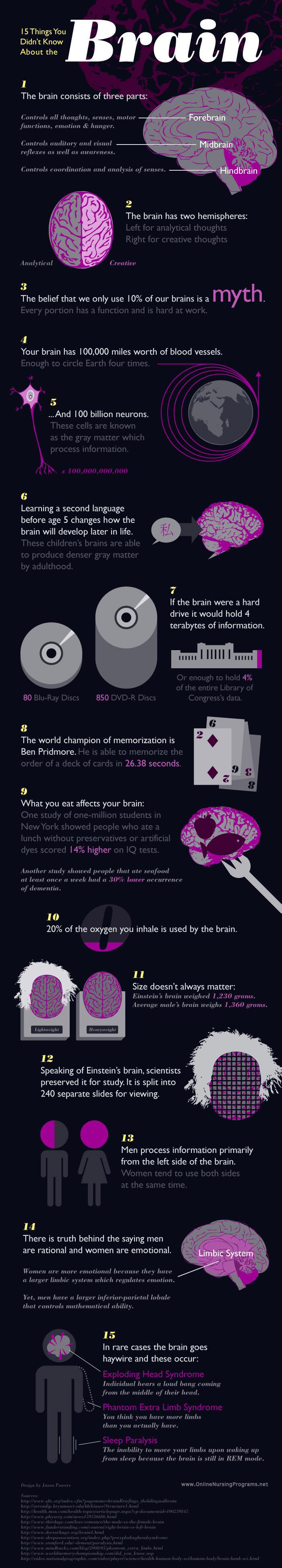 15 datos que podías no conocer sobre el cerebro