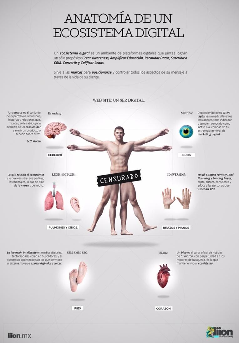 Anatomía de un Ecosistema Digital #infografia #infographic ...