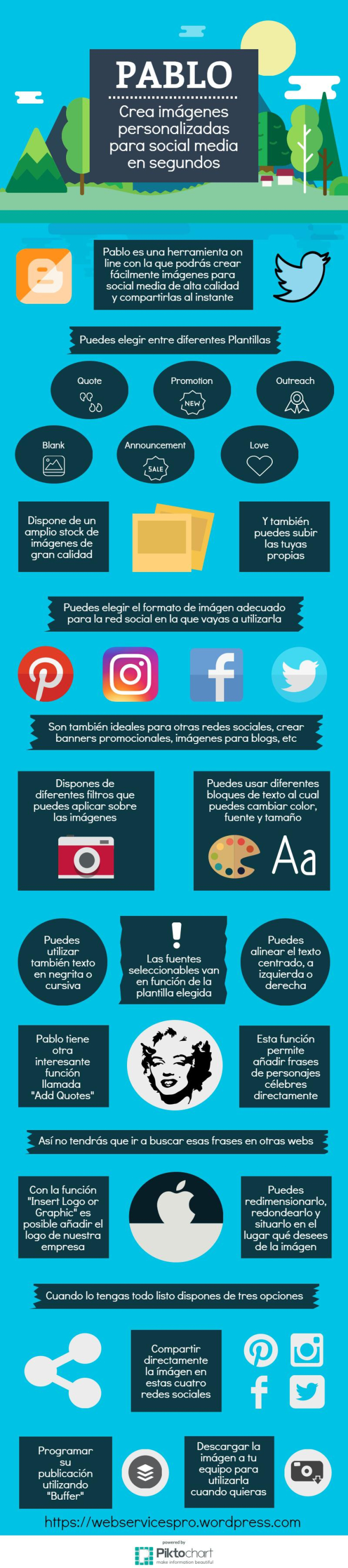 pablo-contenidos-visuales-infografia