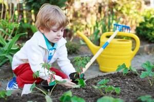 Preschool Vegetable Garden - Natural Playground