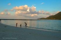 Hermit Crab at Malibu Beach, Koh Phangan - Tidaphotography -