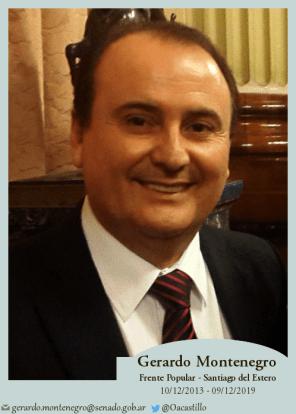 Gerardo Montenegro