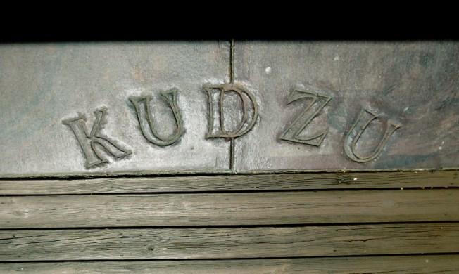 Kudzu-Decatur-17a