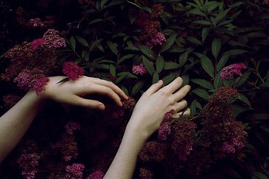 late summer playlist | tide & bloom