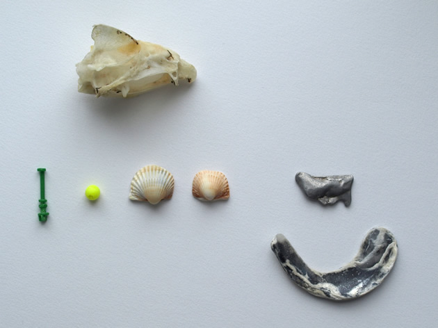 An odd collection of tideline finds