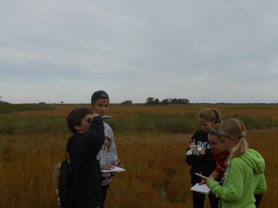 Young scientists and marsh science
