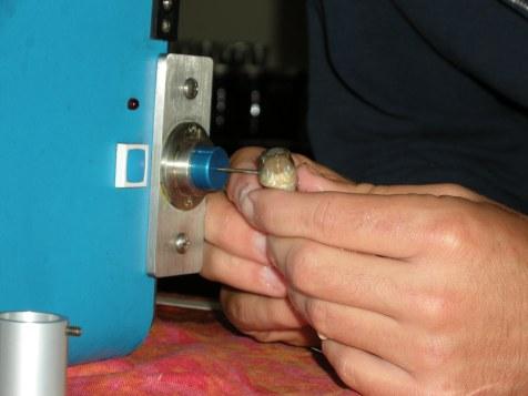 Travis Richards tags a mummichog