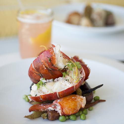 lobster at The TIdes Beach Club