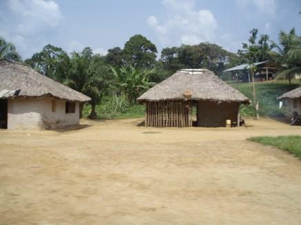 Village hutments