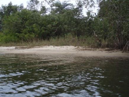 Sand bar on Du river