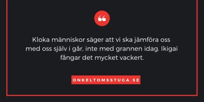 Förklaring av Ikigia på svenska