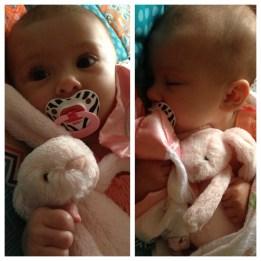 Snuggle Bunny!