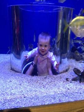 her second trip to the aquarium