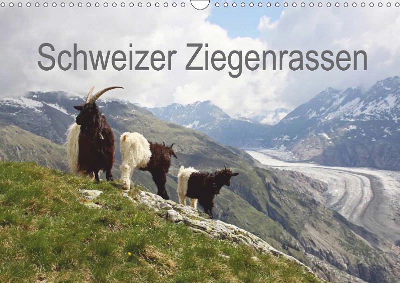 Schweizer Ziegenrassen 2015