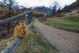 Im Banne des Matterhorns