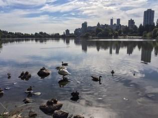 Skyline vom Stanley Park
