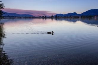 Blaue Stunde am Lake Osoyoos