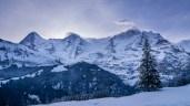 Eiger, Mönch & Jungfrau am frühen Morgen